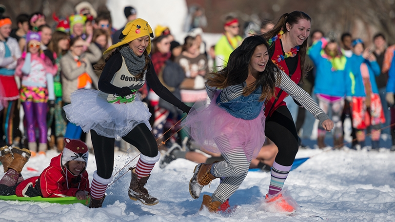 Students compete in the 2014 human dogsled race